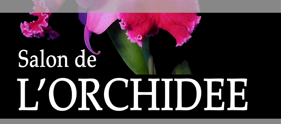 expositions 4 me salon de l 39 orchid e montamis 14