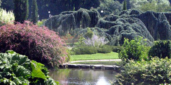 Discussions dans le Jardin des Roses Gulistan Jpg_7_4ko-roseraieIMG_011